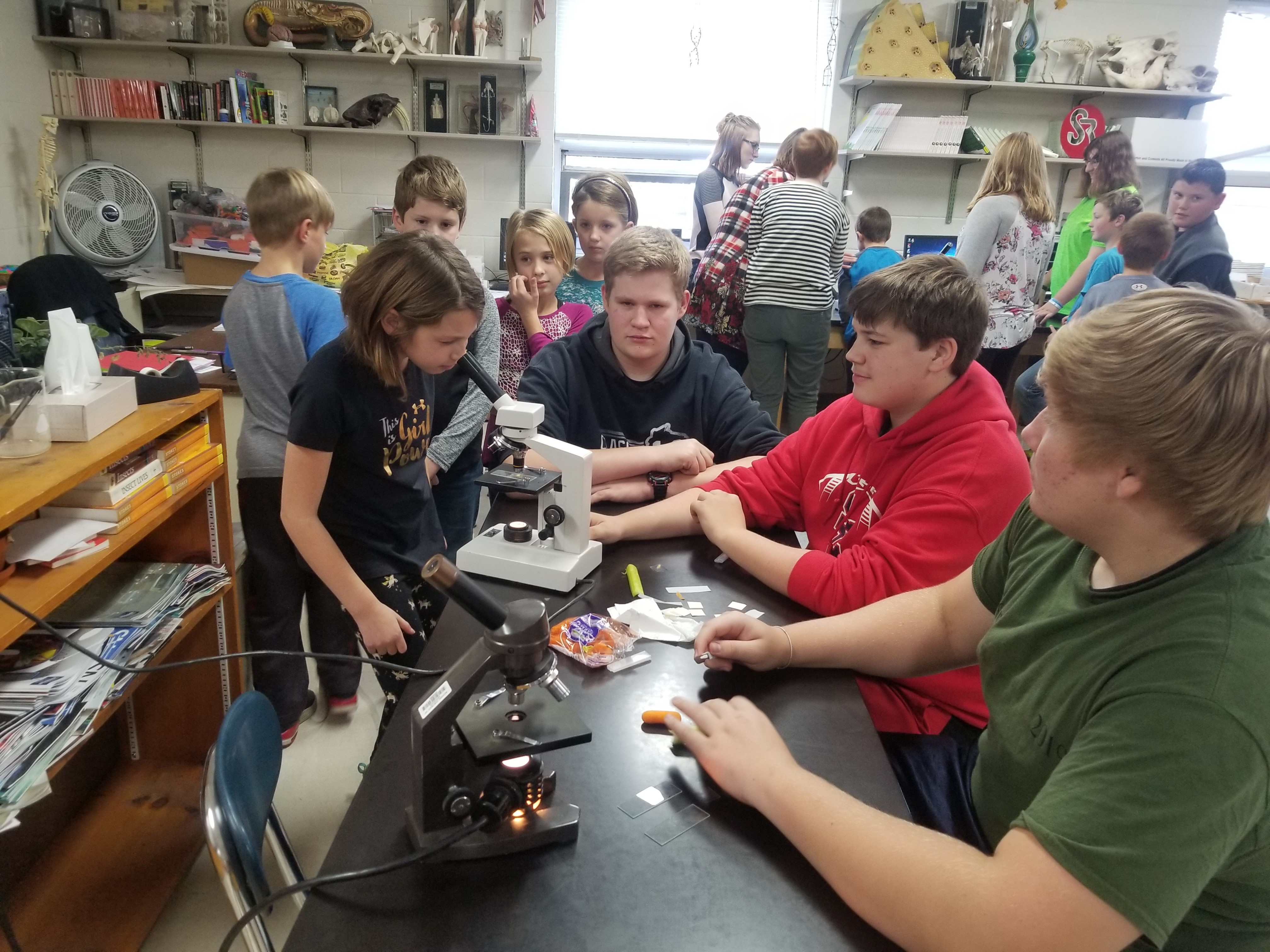 4th graders worked with high school students to explore cells under microscopes. They LOVED it!
